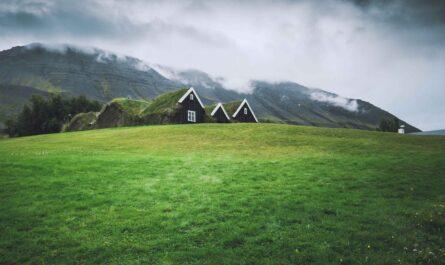 Ekologická architektura v podání domu se zelenou střechou.