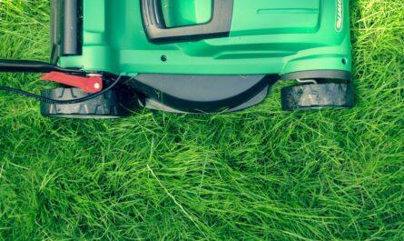 Zahradní sekačka používána při sečení trávníku.